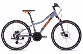 Giant XtC Jr 1 Disc 24 (2019)